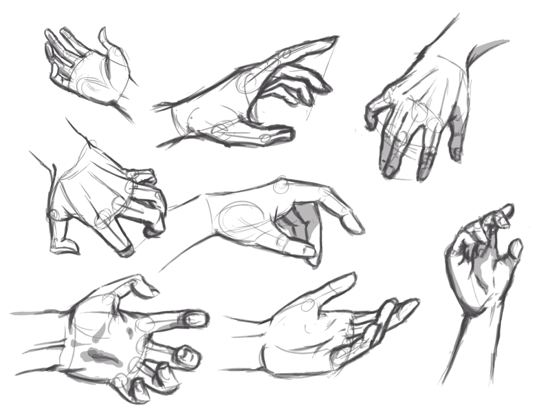 Right Hand Drawing Reference Related Keywords